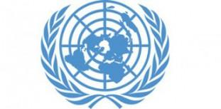 FN logga
