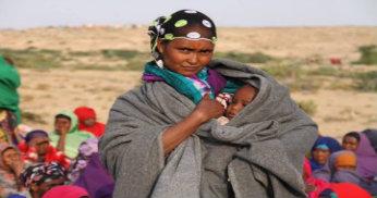 Flyktingar i läger i Somaliland.