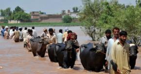 Människor som drabbats av översvämningar i Pakistan.