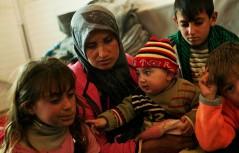 UNHCR-B.Szandelszk_newsbanner-crop_0
